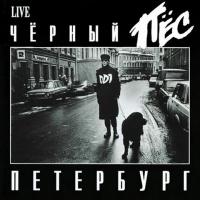 Черный Пёс Петербург