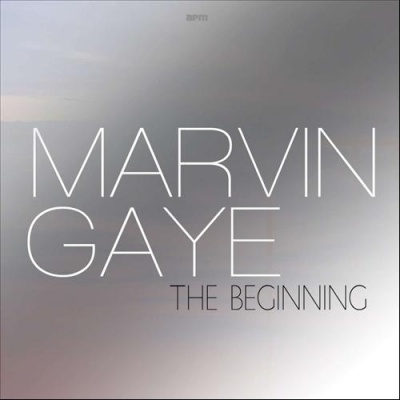 Marvin Gaye - The Beginning (Album)