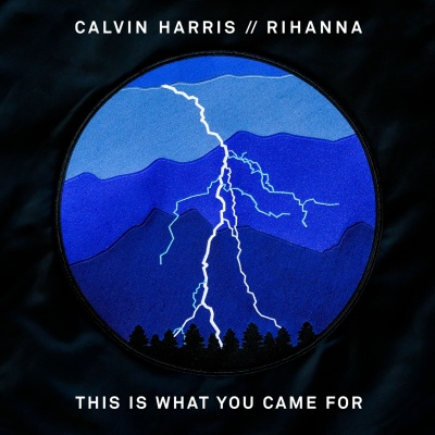 Calvin Harris - This Is What You Came For (Single)