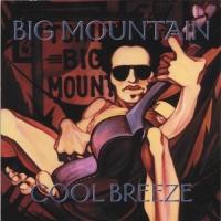 Big Mountain - Cool Breeze (Album)