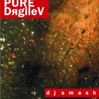 PURE-DяgileV - CD1