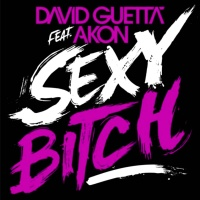 David Guetta feat. Akon - Sexy Bitch (Extended Version)
