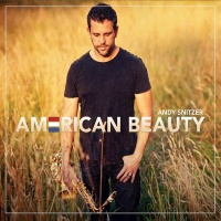 Andy Snitzer - American Beauty