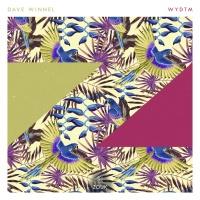 Dave Winnel - Wydtm (Single)