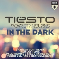 In The Dark (Remixes)