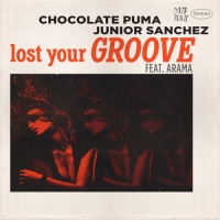 Lost Your Groove (Original Mix)