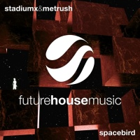 Spacebird (Original Mix)