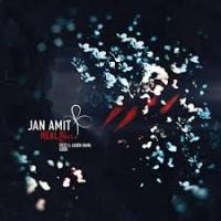 Jan Amit - Heal
