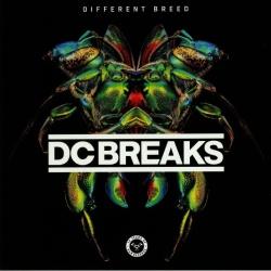 DC Breaks - Moving On (Original Mix)