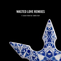 Steve Angello - Wasted Love Remixes (feat. Dougy)