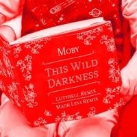 This Wild Darkness (Maor Levi Remix)