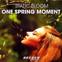 Static Bloom - One Spring Moment
