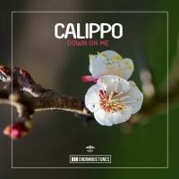 Calippo - Down on Me (Organ Pleasure Draft)