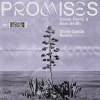 Calvin Harris & Sam Smith - Promises (David Guetta Remix)
