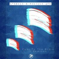 Vanilla Ace - Funk To The Brain