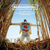Rudimental - These Days (Acoustic Version)