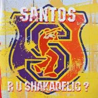 Santos - Tanzen (Original Mix)
