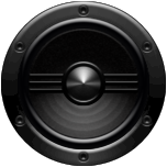 Black Record